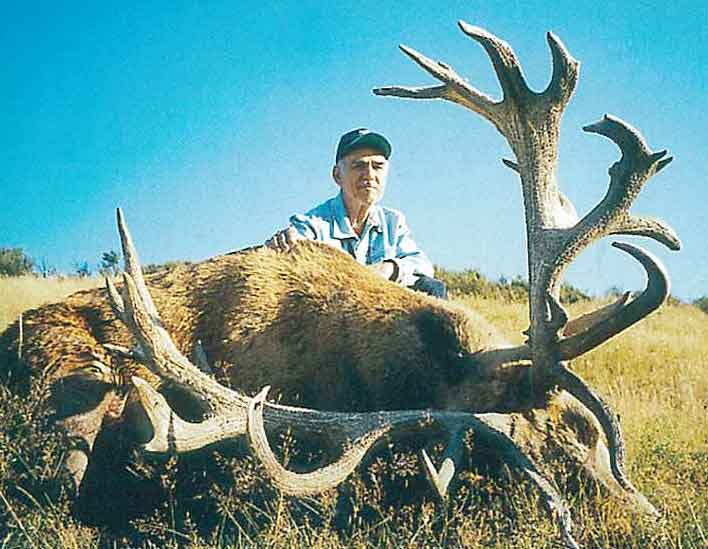 Red Stag hunting in New Zealand. Hunts for red stags with New Zealand Hunting Safaris.