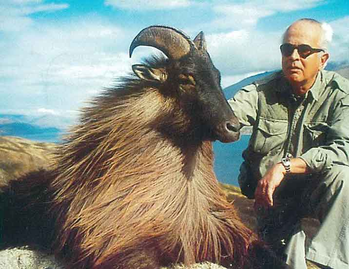 Tahr hunting in New Zealand. Hunts for tahr with New Zealand Hunting Safaris.
